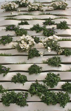 Pareti verdi piante passione blog - Pannelli per giardini verticali ...